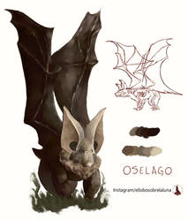 Oselago by ELSLL