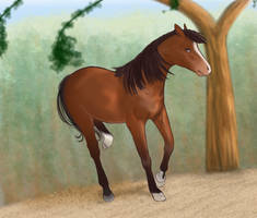 Horse and Coloring Practice by Mizulyn