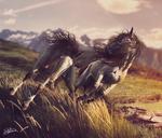 Druid and Paradisum