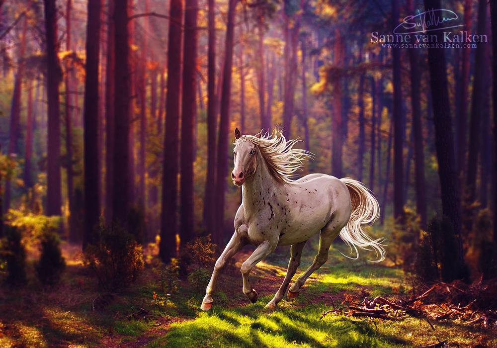 The sound of Autumn by Esveeka