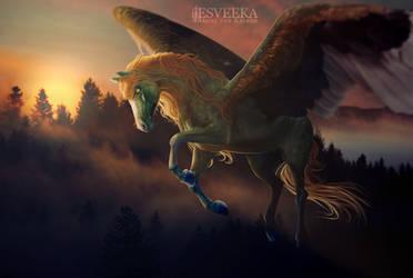 Nature plays by Esveeka