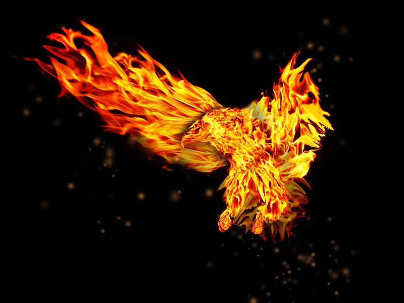 fire eagle by Lepercqj