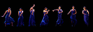 the flamenco sequence