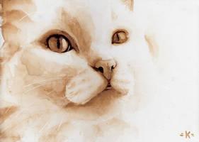 Cat . April