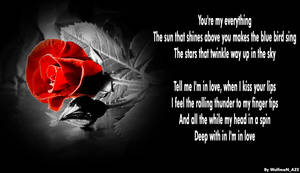 Rose by NamfloW