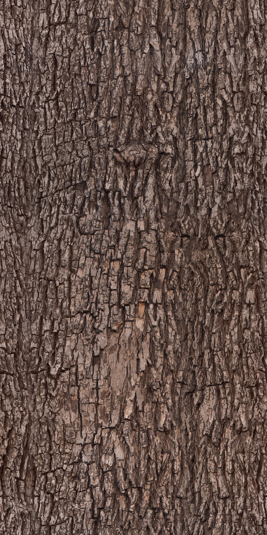 Tree bark - texture, pattern by ivangraphics on DeviantArt: ivangraphics.deviantart.com/art/Tree-bark-texture-pattern-208493997