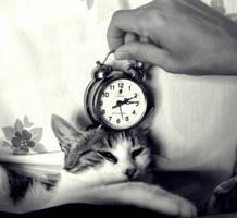 Time to sleep by Lexxen
