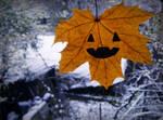 .37. Pumpkin by Lexxen