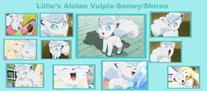 Lillie's Alolan Vulpix: Snowball/Shiron Collage