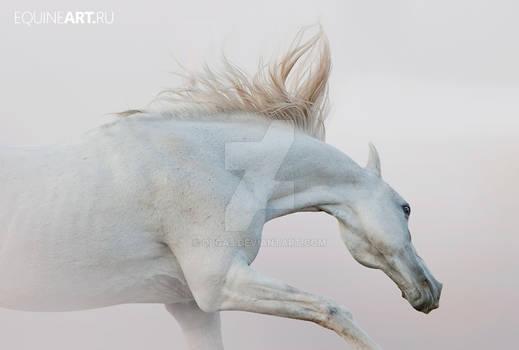 spirit of wind