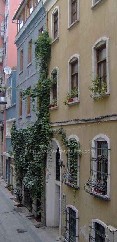 beyoglu by canee