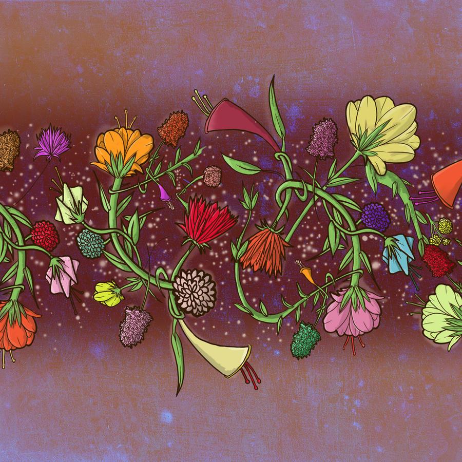 Night flowers by ilkevandeventer