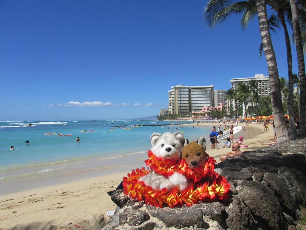 Goodbye Hawaii ^^ by JCFox