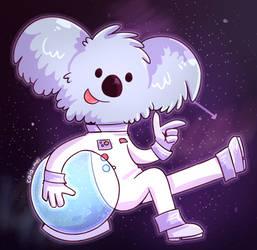 Cosmic Koala