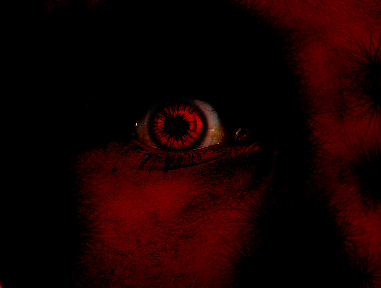 Macabre eye by jan222 on DeviantArt