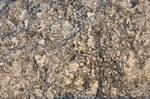lb1-109 rock texture