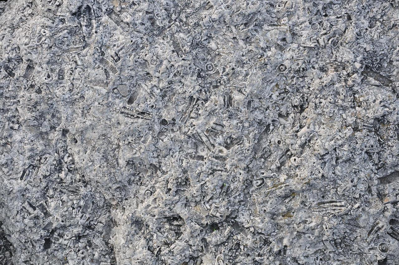 lb1-110 rock texture