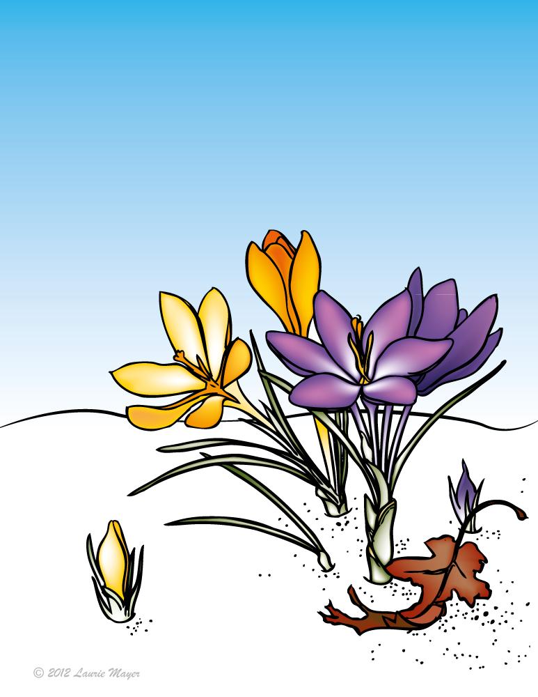 Line Art On Illustrator : Coloring line art w gradient mesh in illustrator by