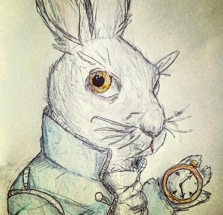 White Rabbit Alice In Wonderland By Paintedangelwings