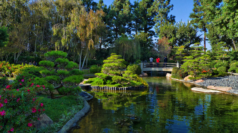 Csulb Koi Pond HDR by Secretcow on DeviantArt