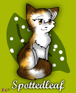 warrior cats coloring pages spottedleaf - photo#29
