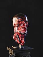 Biomech skull - Red 2