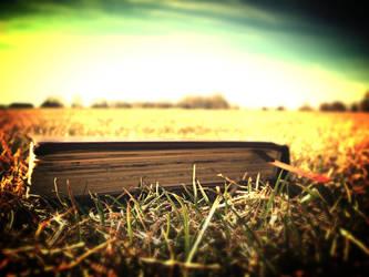 Little Book by NeverLeaveMee