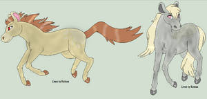 5 Point horse adopts :CLOSED: