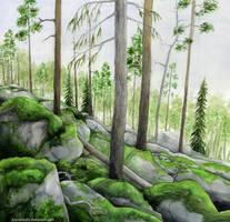 Rocky Forest by Tuonenkalla