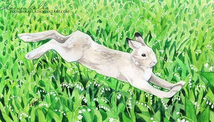 Run Rabbit Run by Tuonenkalla