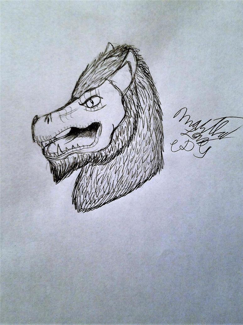 Wizard101 Ice Wyvern Head Sketch by Cookiedough-Gecko