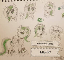 Mlp Oc: Forest 'Terra' Verede  by MlpWreck12345