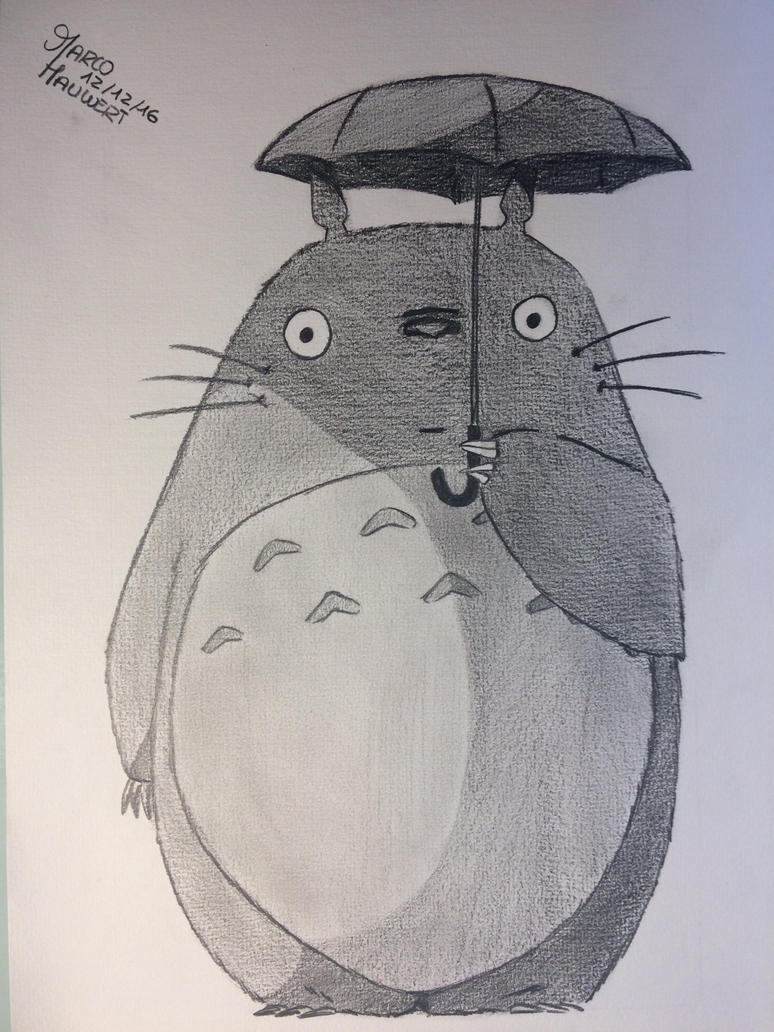 Totoro in the rain by MarcoHauwert