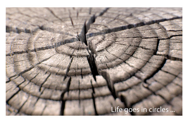 Life goes in circles
