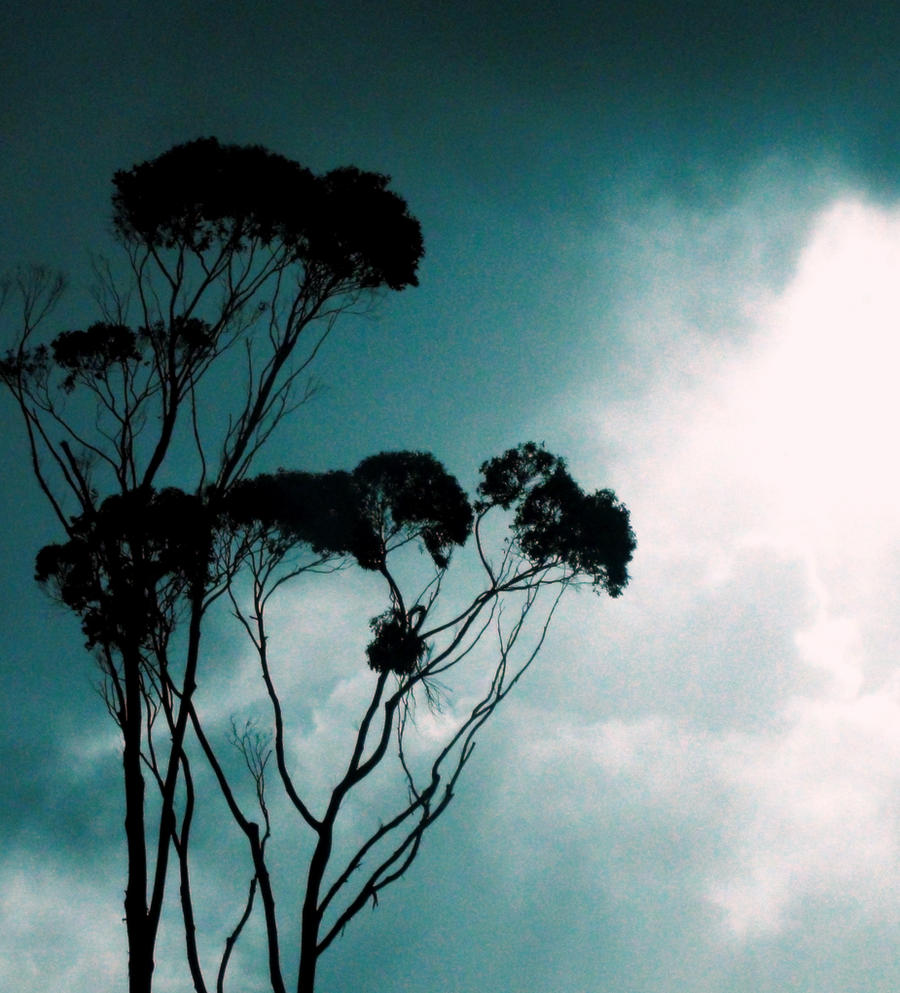 Lightness by Mya-Kat
