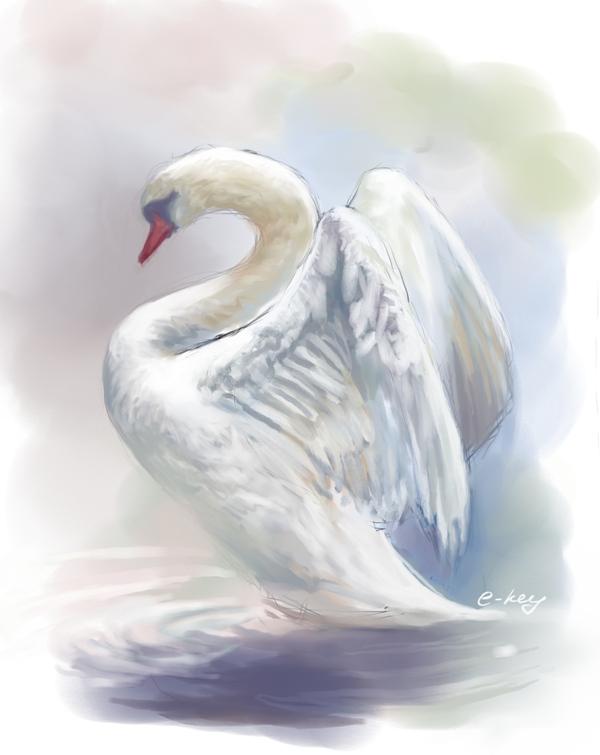 swan by E-key