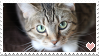[STAMPS] Kitter!! by creationcomplex