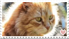 [STAMPS] Cat! by creationcomplex