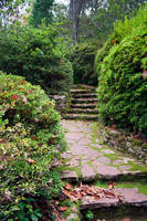 Garden Path _ Stock by Inadesign-Stock