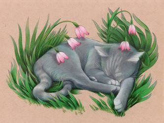 Flower Blanket by unusualworlds