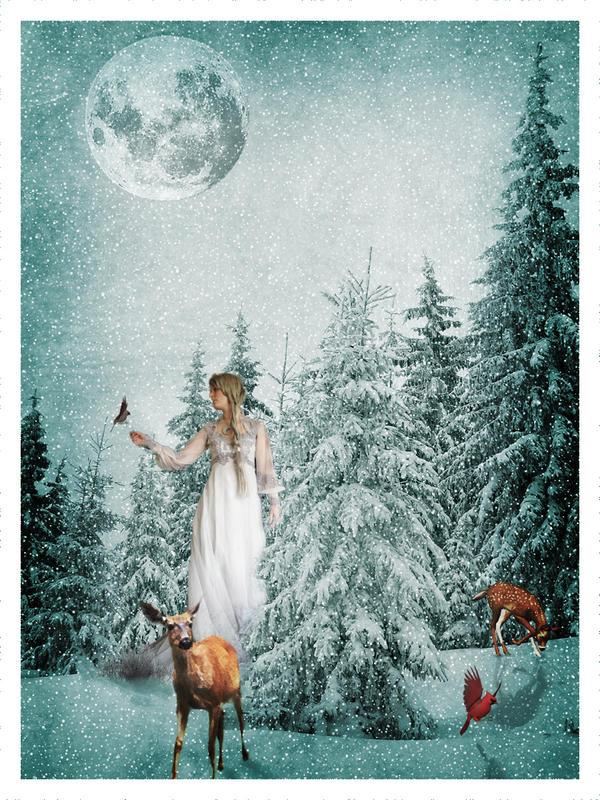 Winter Wishes by emmysdaddy