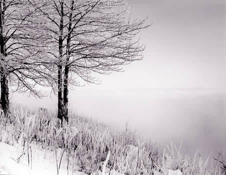 Hoarfrost Developed by TheLong