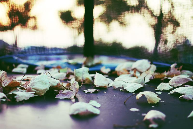 Fallen Rest by CherishKay