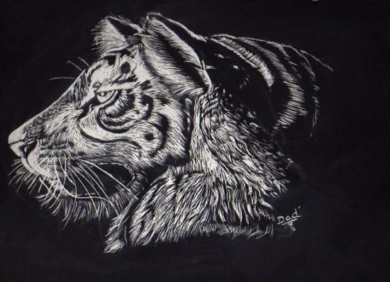 Dad' Tigre_by_Dad24