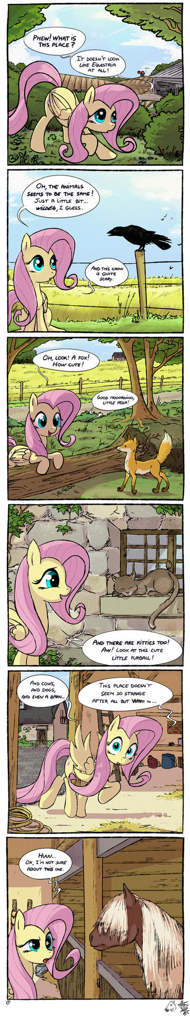 MLP Meets Real World 01: Similarities by FidzFox