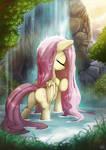 Fluttershy's Waterfall