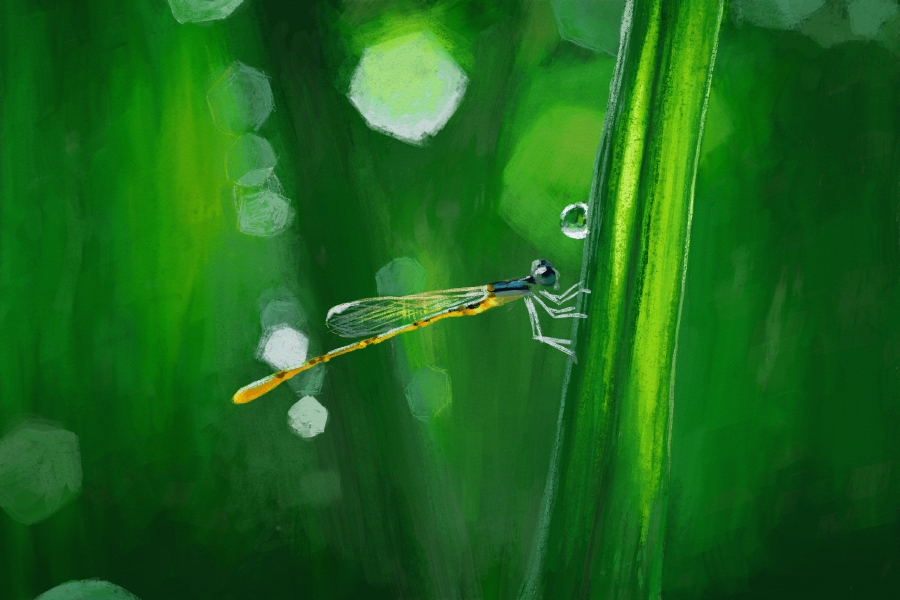 Dragonfly by KosArtworks
