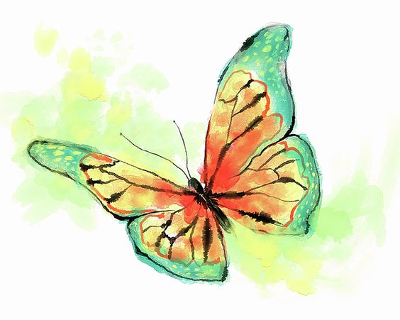Watercolor Butterfly by KosArtworks