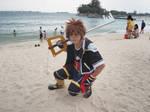 Sora from Kingdom Hearts 2 by Heatray2009