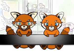 Red Panda YouTube Bamboo Review